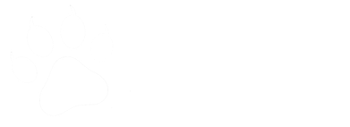 Pet Angel Adoption and Rescue